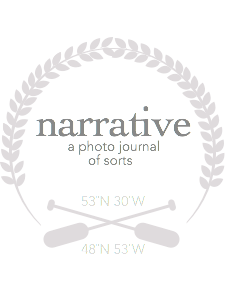 Narrative by Shy