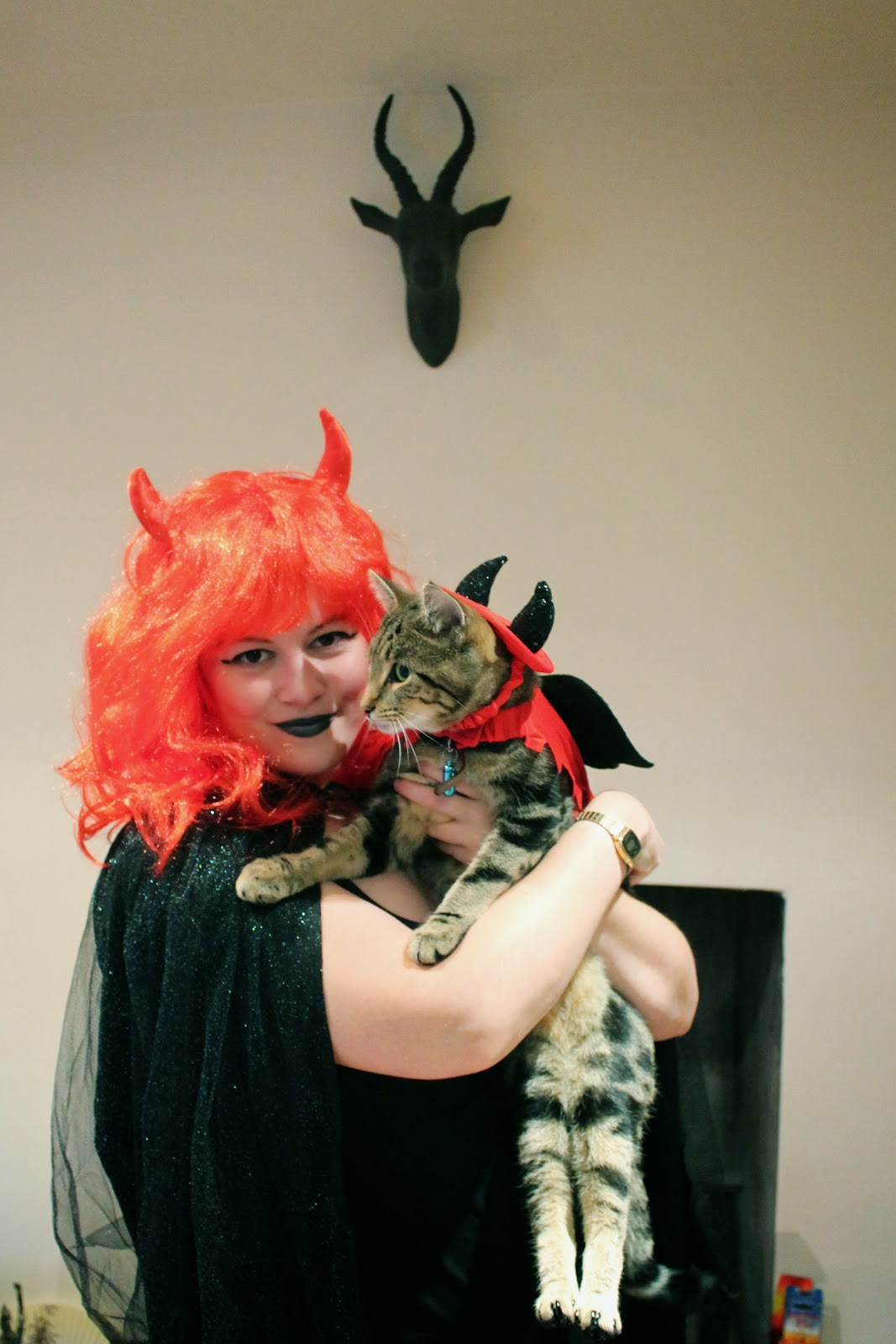 matching halloween devil costume for cats dogs pets humans