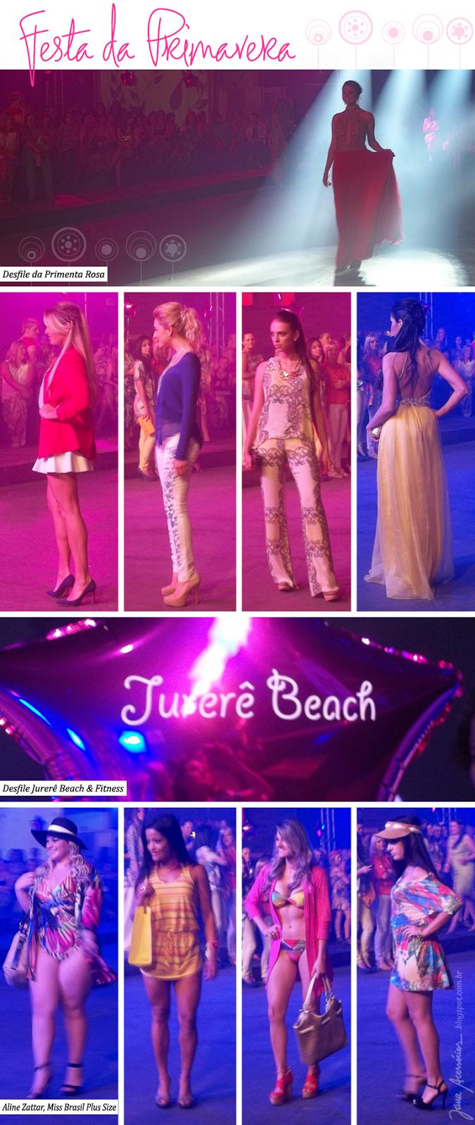 Festa da Primavera, Blog da Jana, Joinville, Fabiola Bernardes, Estrelas com champanhe