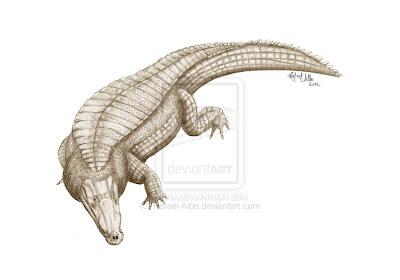 formas de cocodrilos Goniopholis