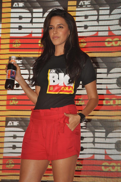 neha dhupia at the new logo launch of cola brand big cola.