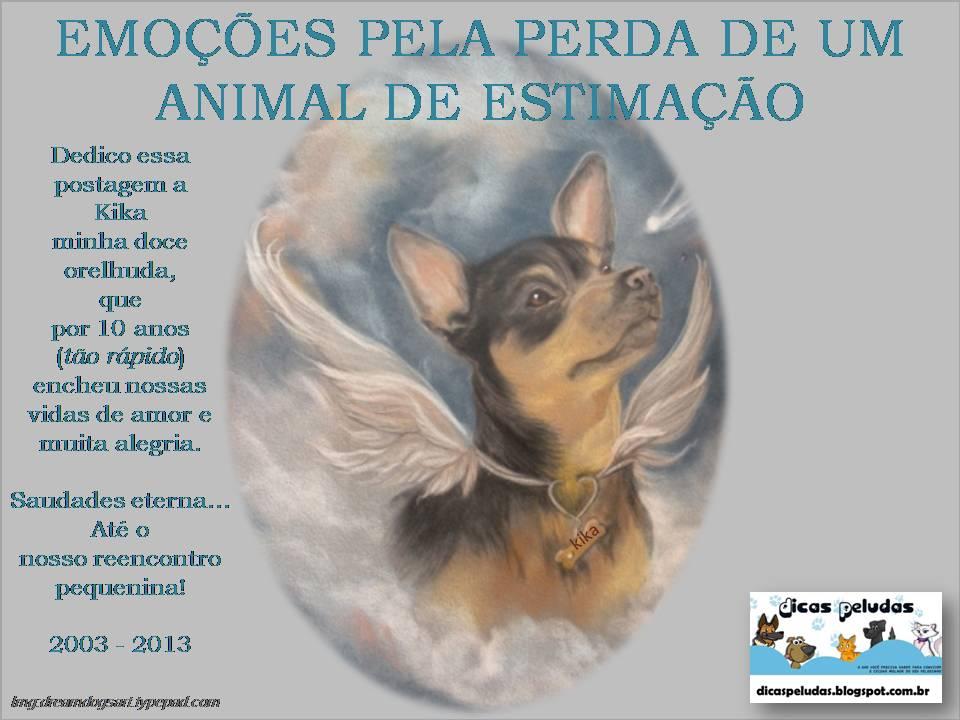 Mensagem Para Quem Perdeu Um Animal De Estimação