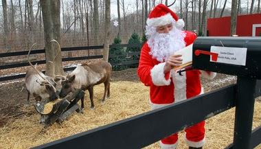 Santa reindeer cam myideasbedroom com