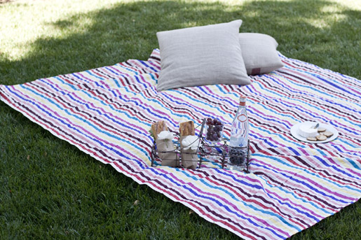 Backyard Picnic backyard picnic: for two | could i have that?