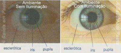 Com pouca iluminação a pupila se dilata. Em ambientes iluminados a pupila se contrai.