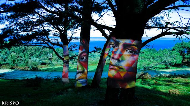 arboles pintados con caras