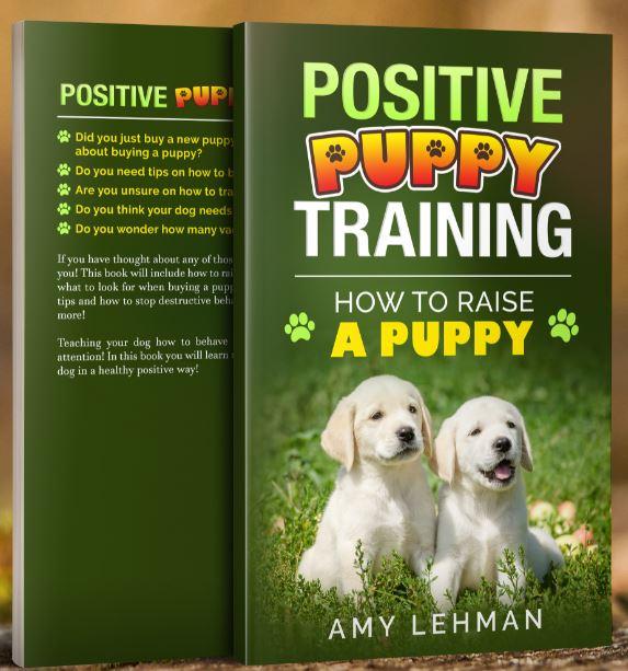 My New Puppy Training Book