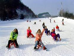 เที่ยวเกาหลี ทีมงานกล้าท้ารวย