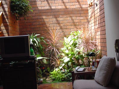 Jardines interiores for Imagenes de jardines interiores