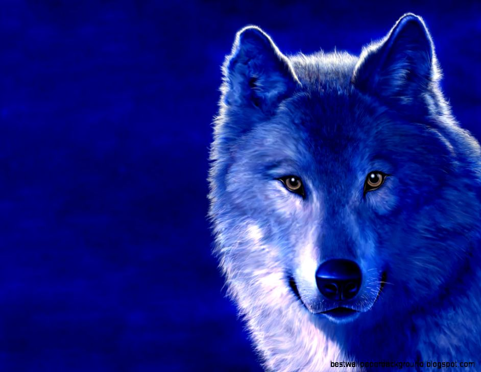 View Original Size Wolf HD Wallpapers Wolves Desktop For Android Cool