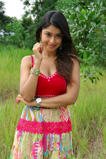 Payal Ghosh Show Cleavages Hot Pictures