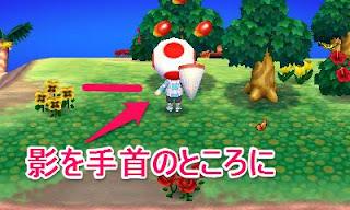 どうぶつの森 3DS DS 任天堂 ニンテンドー 入荷 予約 待ち ソフト とびだせどうぶつの森