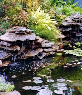 Pond Design, Continued