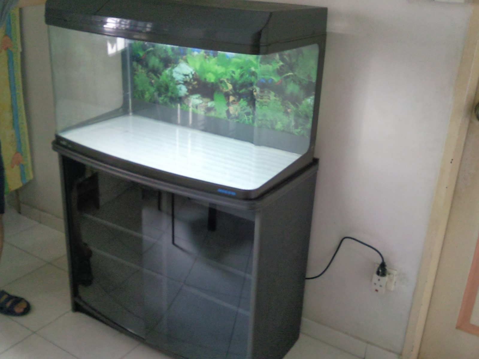 Tropical Fisher Man Fish Tanks And Aquarium CRS: 3 feet Fish Tank ...