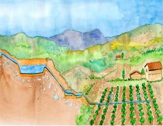 Buenas prácticas: riego presurizado con micro reservorios