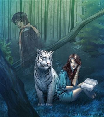 Resenha A Maldição Do Tigre De Colleen Houck Sagas Amapá