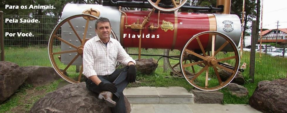Flavidas