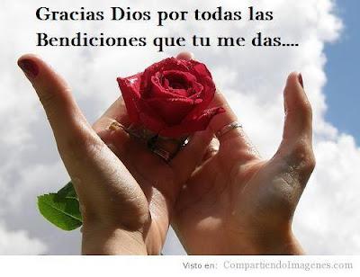 gracias se  241 or rey de los cielos alfa y omega rey del universo gracias    Estoy Feliz Gracias A Dios