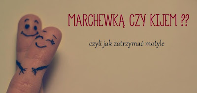 O kiju, marchewce. I motylach w brzuchu te.