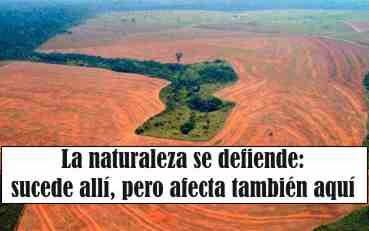 El Amazonas y El Plata