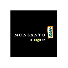 bowman vs monsanto Bowman vs monsanto co will be decided based on the court's interpretation of a  complex web of seed and plant patent law, but the case also.