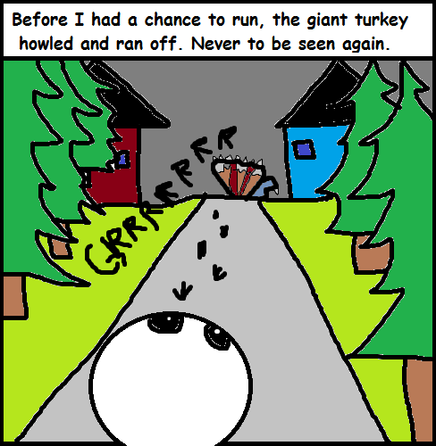 turkey runs away