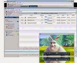 Free Download Vuze Bittorrent Client 5.5.0.1 Beta 29 / 5.5.0.0