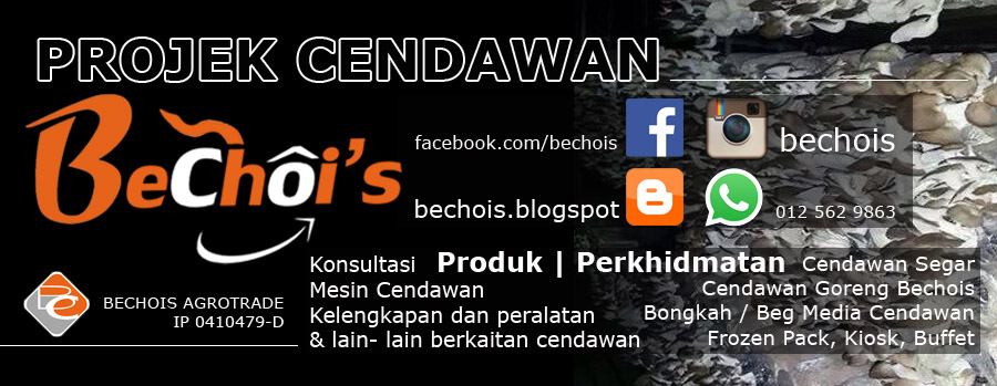 BecHoi's