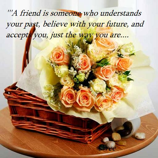 Wonderful Friendship Quotes !