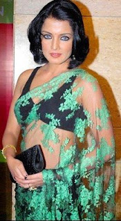 sexy celina in saree-hairstyle