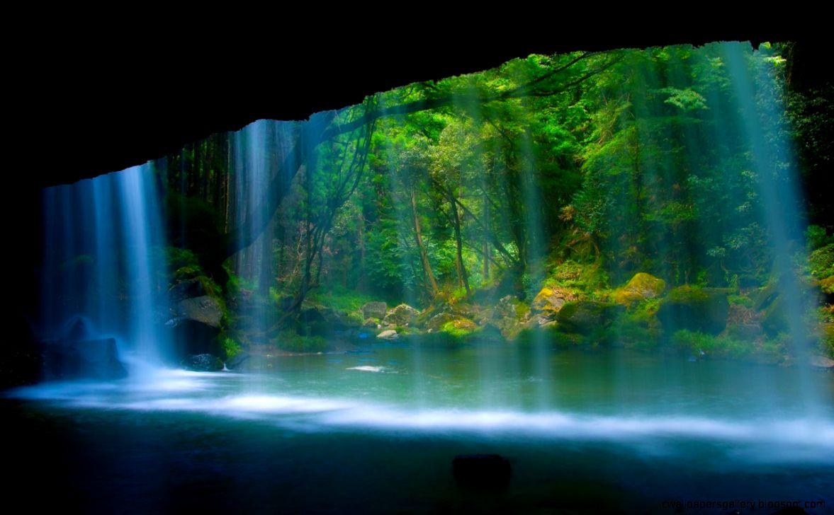 Tropical rainforest waterfall wallpaper 7740 open walls  Chainimage