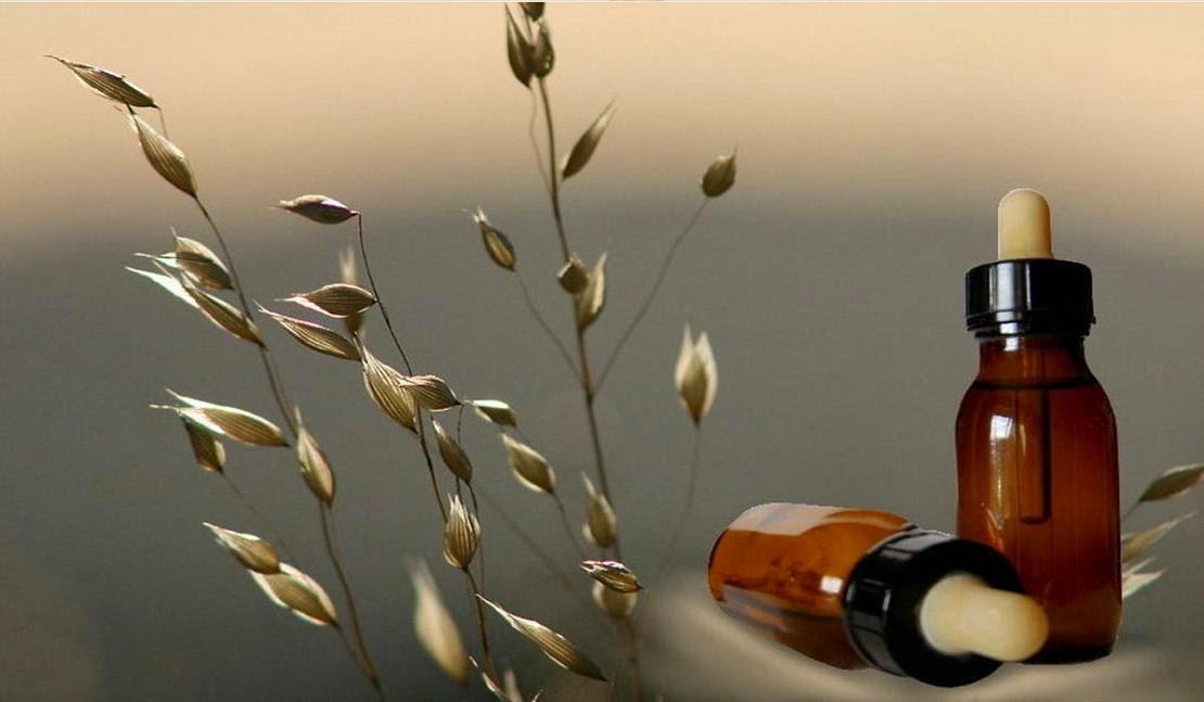 Bello foto efecto para decora fotografias con una flor y una  - Efectos Para Fotos De Flores
