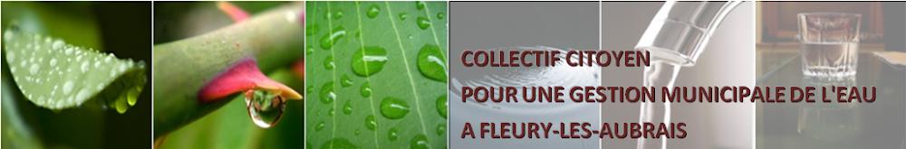 Collectif citoyen pour une gestion municipale de l'eau à Fleury-les-Aubrais