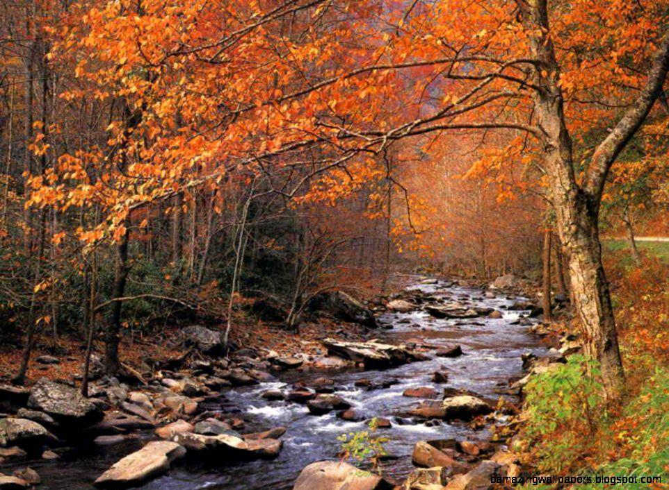 Autumn Desktop Backgrounds Free   WallpaperSafari