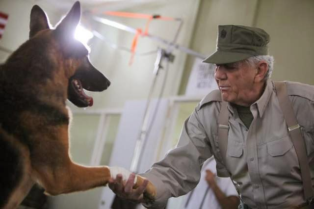 Military News - Iconic 'Devil Dog' R. Lee Ermey hosts new military working dog reality show