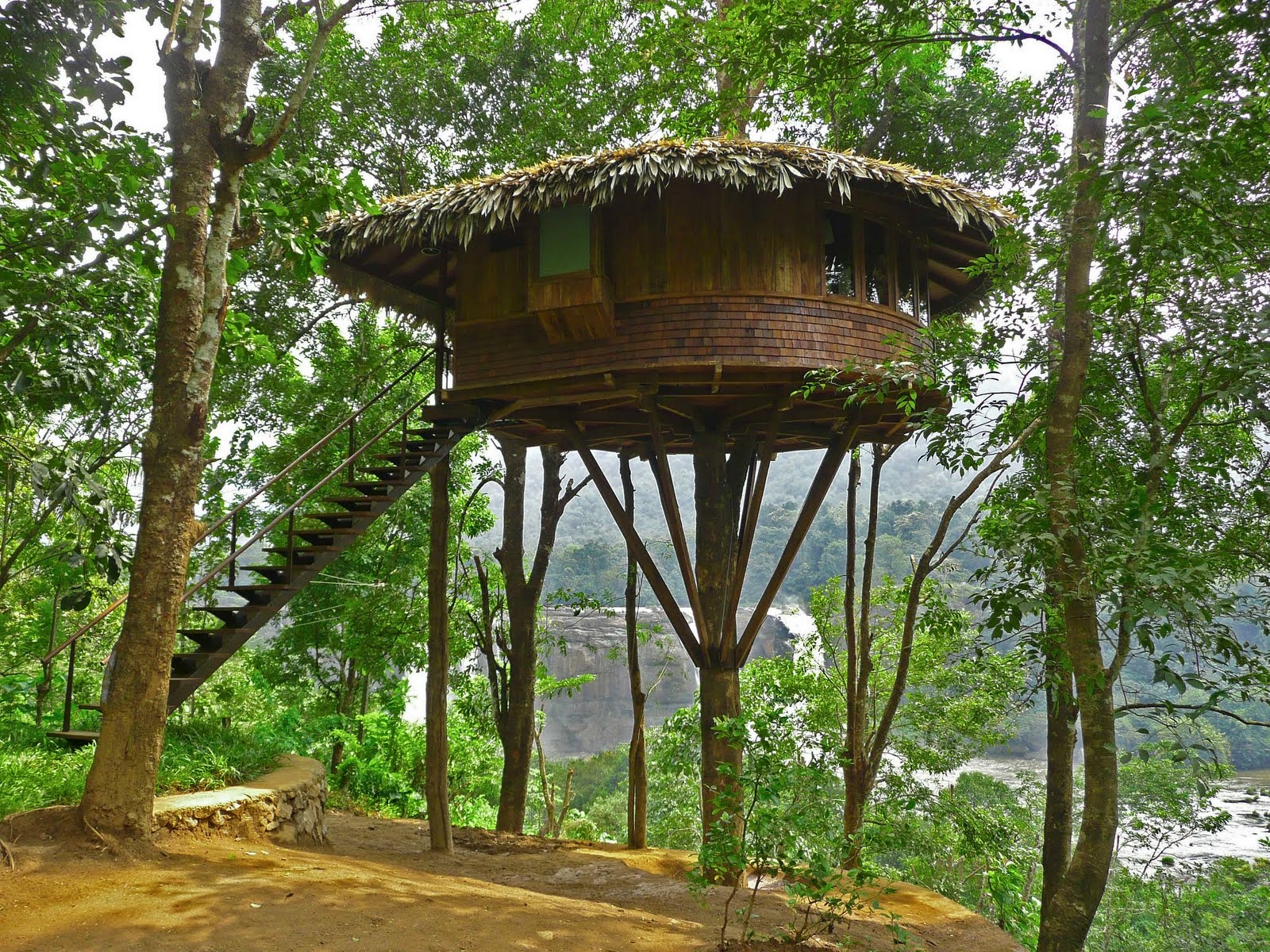 Beautiful tree houses prime home design beautiful tree for Treehouse designers