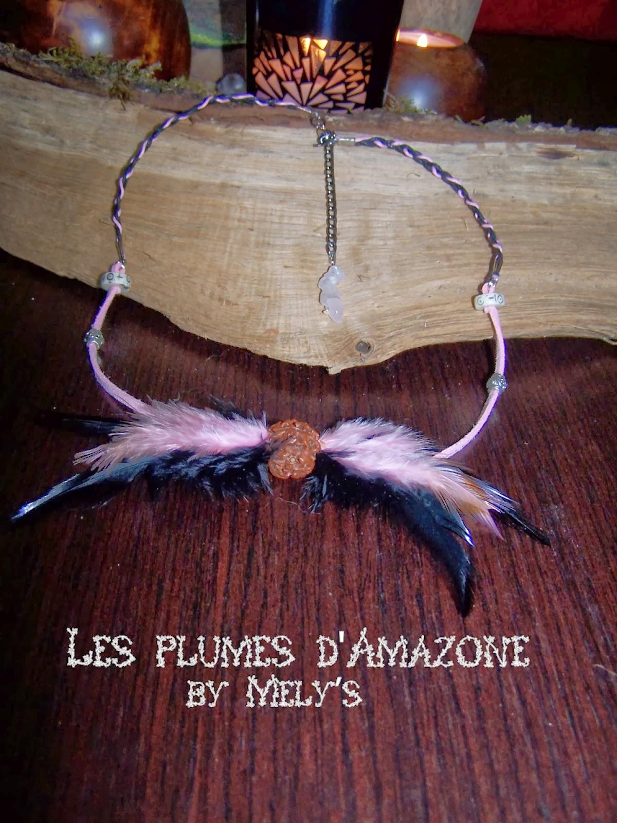 Les plumes d 39 amazone la magie des plumes et des min raux - Amazone magasin en ligne ...