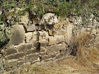 Detall d'una paret de la Bassa Codina