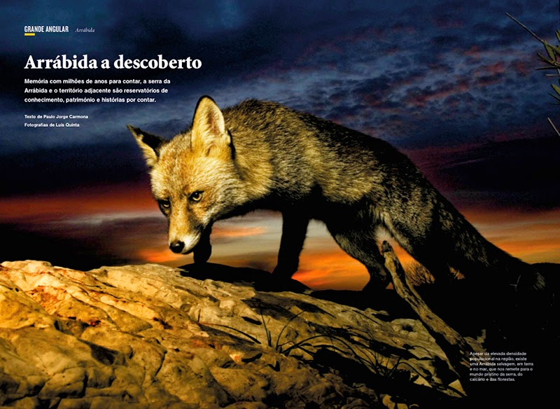 National Geographic Magazine PT Agosto2014