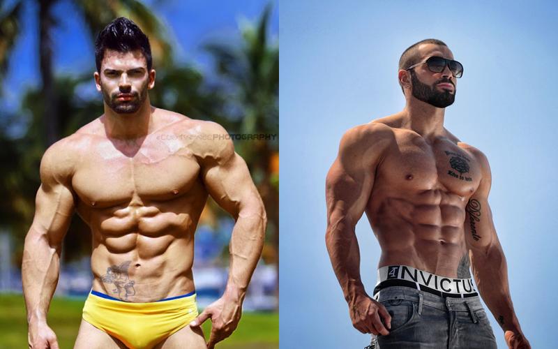 bodybuilding exercises 101 sergi constance lazar angelov modern