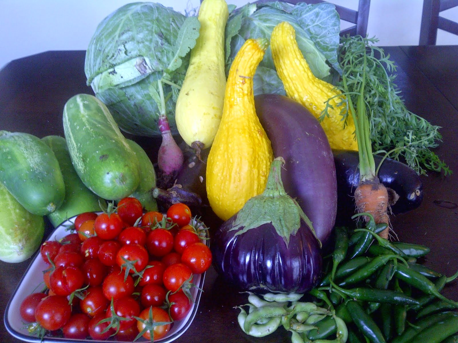 A Bounty from the Community Garden