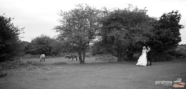 moorland garden hotel dartmoor devon wedding picshore photography