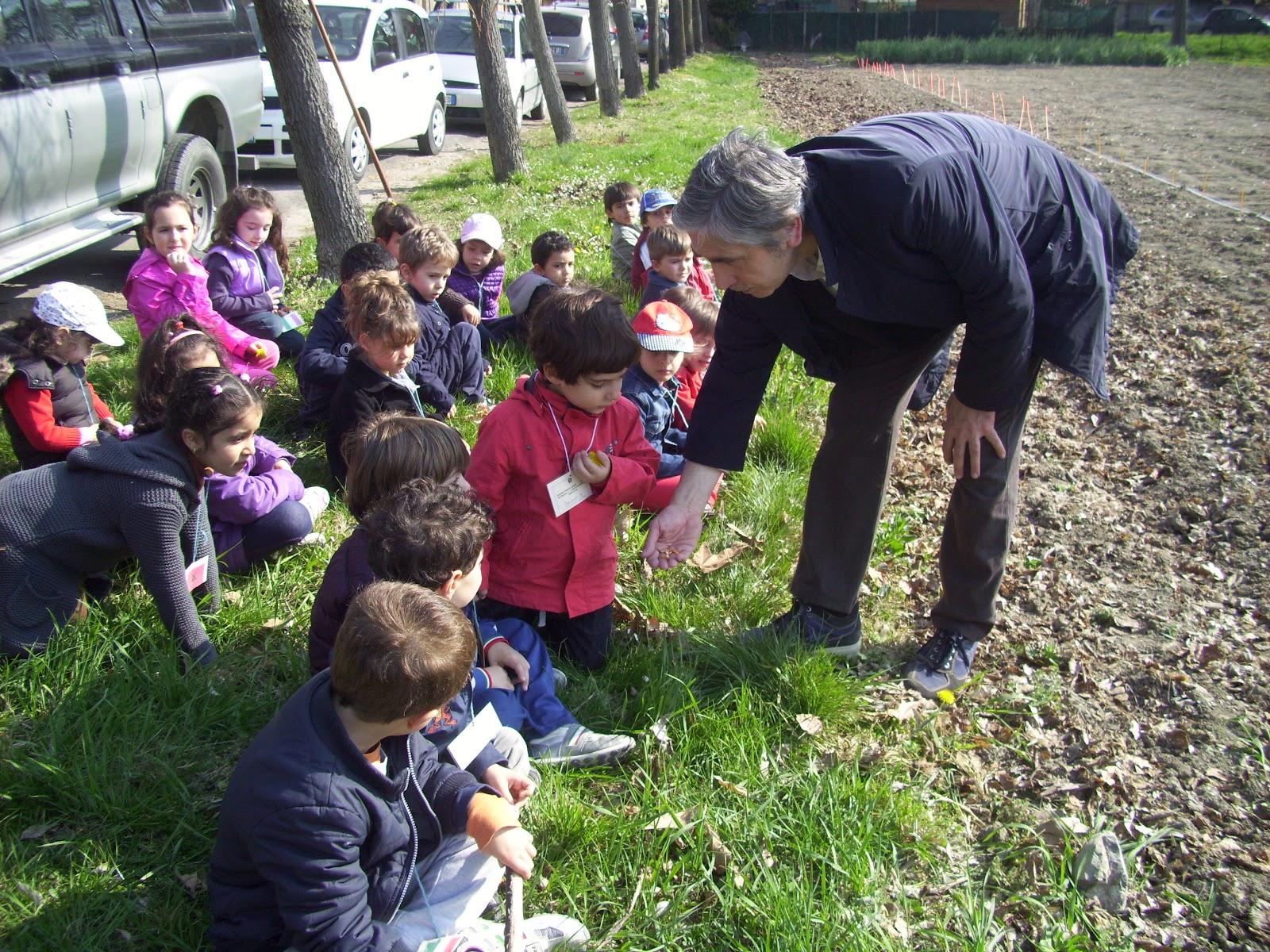 scuola gallini voghera lombardy - photo#3