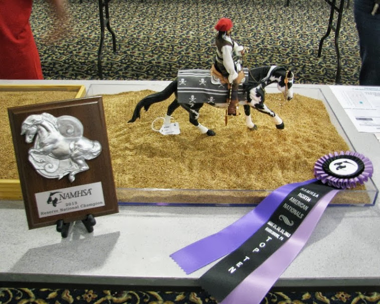 2013 NAN Reserve Champion AR/CM  Reining Western Dressage.
