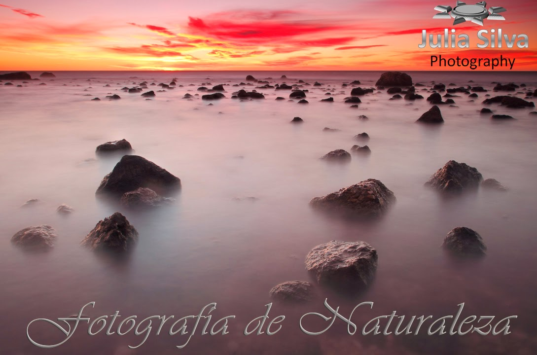 Fotografía de Naturaleza .