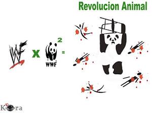 Revolucion Animal