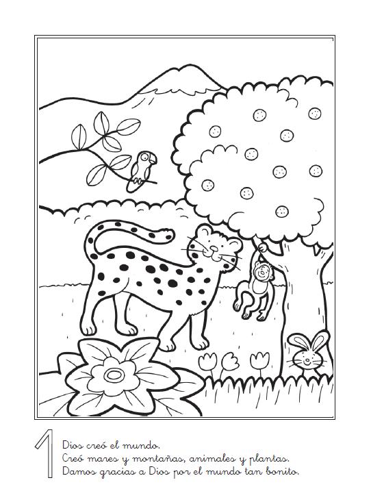 Famoso Biblias Para Colorear Para La Creación De Niños Viñeta ...