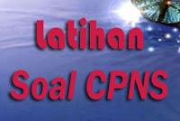 Download Kumpulan Soal Tes CPNS 2013 Gratis