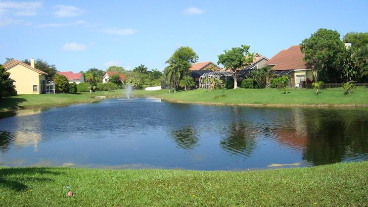 El patio de mi casa es como un espejo de luz, de agua y de paz