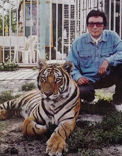 Fancy a tigrisével
